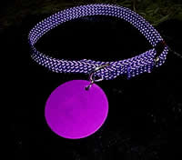 Purple Disk Dog Collar 3/8 inch