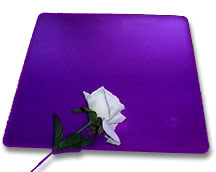 "TESLA PURPLE ENERGY PLATE-Large 12""X12"""